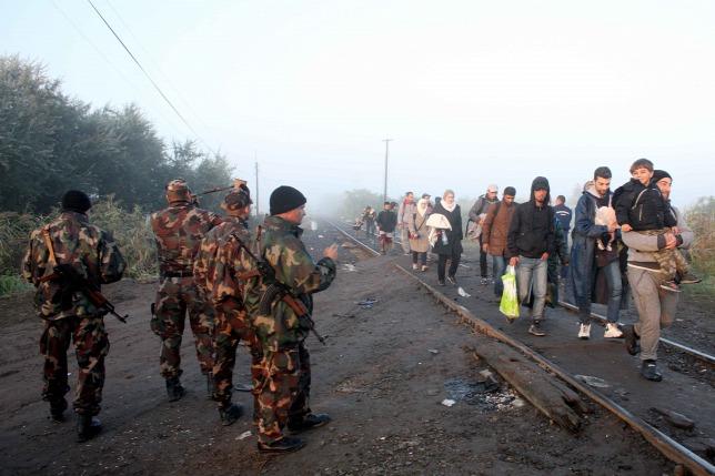 Határt őriznek a katonák Röszkénél fotó: origo.hu